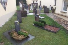 Ausstellung-Burgstädt_3